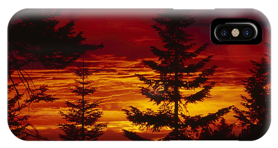 Sequoia National Park California IPhone X / XS Case featuring the photograph Sky Of Fire by Soli Deo Gloria Wilderness And Wildlife Photography