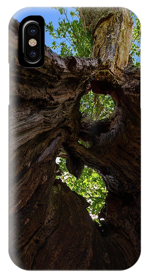 Cumbria Lake District IPhone X Case featuring the photograph Sky View Through A Hollow Tree Trunk by Iordanis Pallikaras