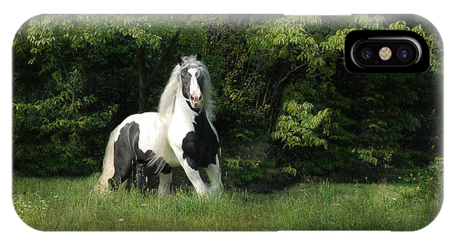 Horse Artwork IPhone X Case featuring the photograph Slainte by Fran J Scott