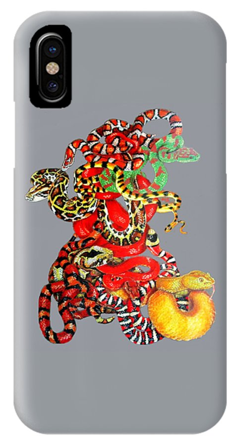Reptile IPhone X Case featuring the drawing Slither by Barbara Keith