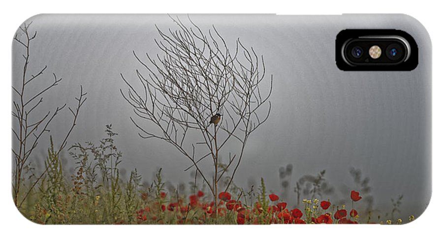 Agriculture IPhone X Case featuring the photograph Small Bird Guarding The Poppy Field by Adrian Bud