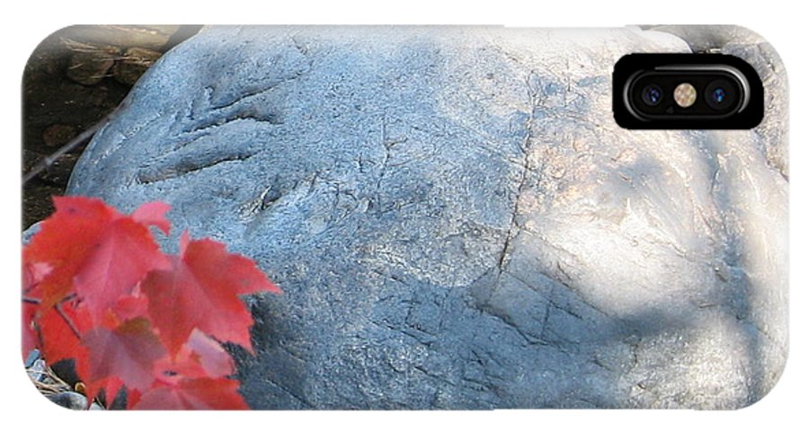 Stone IPhone X Case featuring the photograph Small Wonder by Kelly Mezzapelle