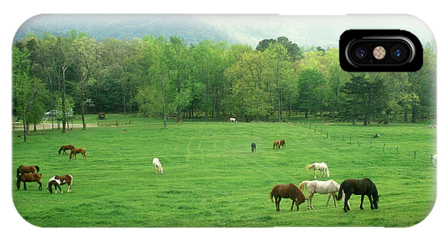 National Park IPhone X Case featuring the photograph Smokies Horses by John Burk