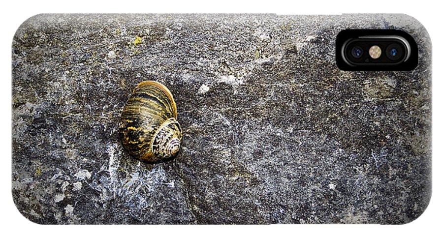 Irish IPhone X Case featuring the photograph Snail At Ballybeg Priory County Cork Ireland by Teresa Mucha