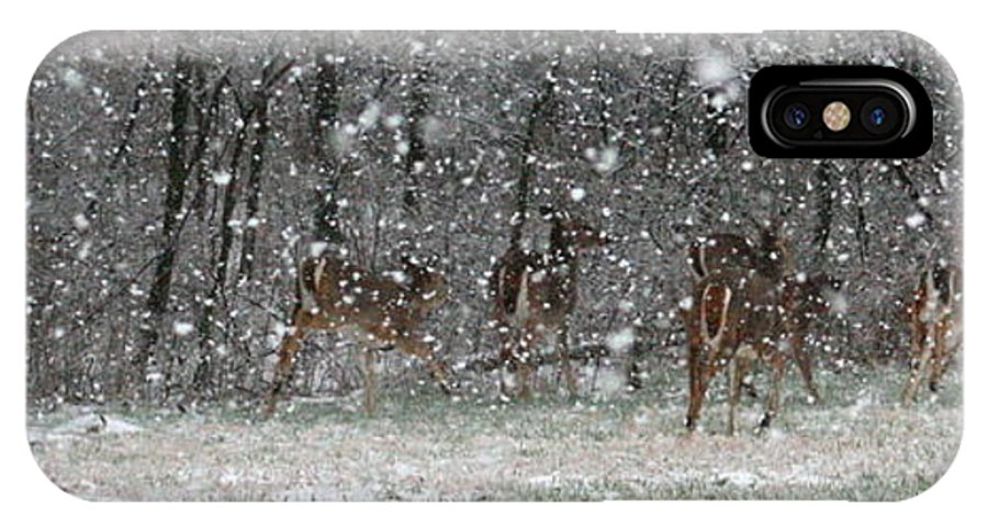 Landscape IPhone Case featuring the photograph Snow Deer by David Dunham