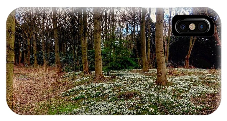 Snowdrops IPhone X Case featuring the photograph Snowdrop Woods 2 by Joan-Violet Stretch