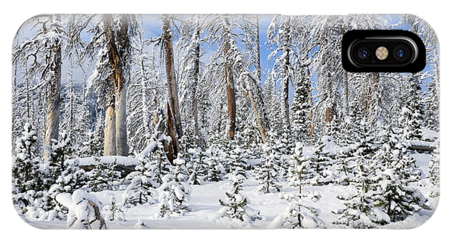 Winter IPhone X Case featuring the photograph Snowscape by Kelley King