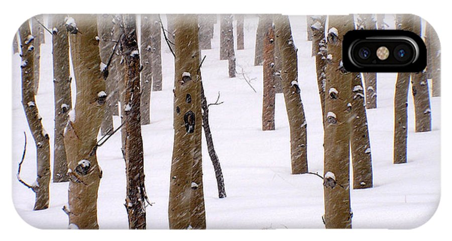 Aspen IPhone X Case featuring the photograph Snowy Aspen by Carol Milisen