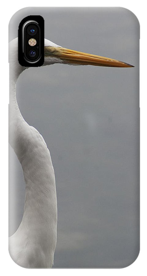 Bird IPhone X Case featuring the photograph Snowy Egret by Carl Purcell