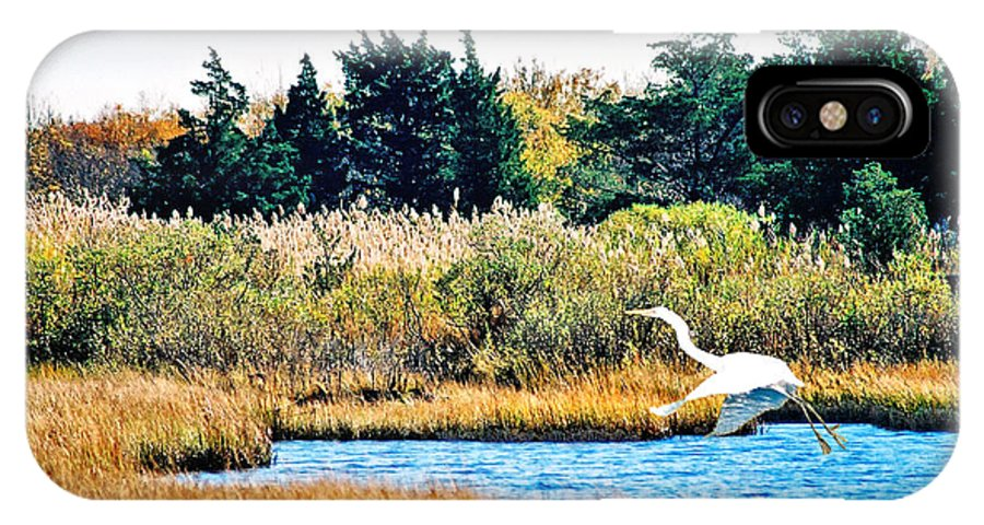 Landscape IPhone X Case featuring the photograph Snowy Egret-island Beach State Park N.j. by Steve Karol