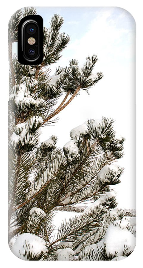 Snow IPhone X Case featuring the photograph Snowy Pine by Julie Gropp