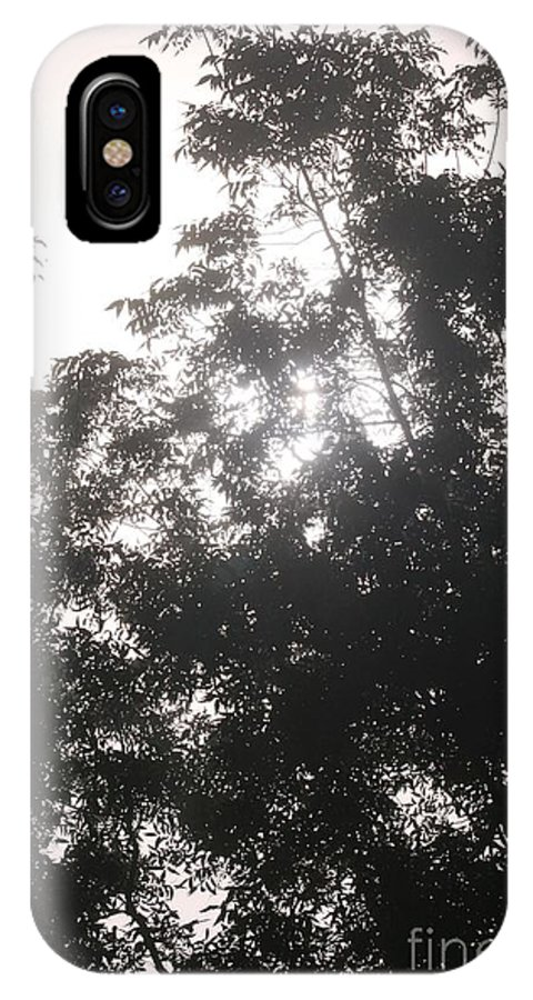 Light IPhone Case featuring the photograph Soft Light by Nadine Rippelmeyer