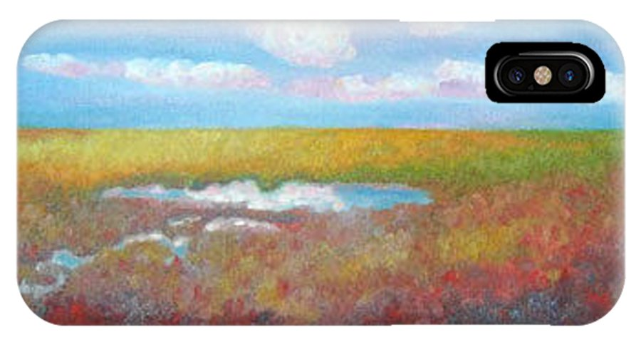 Marsh IPhone X Case featuring the painting Soft Marsh by Blaine Filthaut