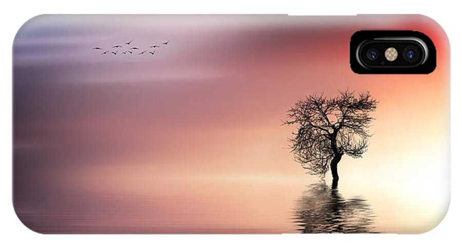 Amazing IPhone X / XS Case featuring the photograph Solitude by Bess Hamiti