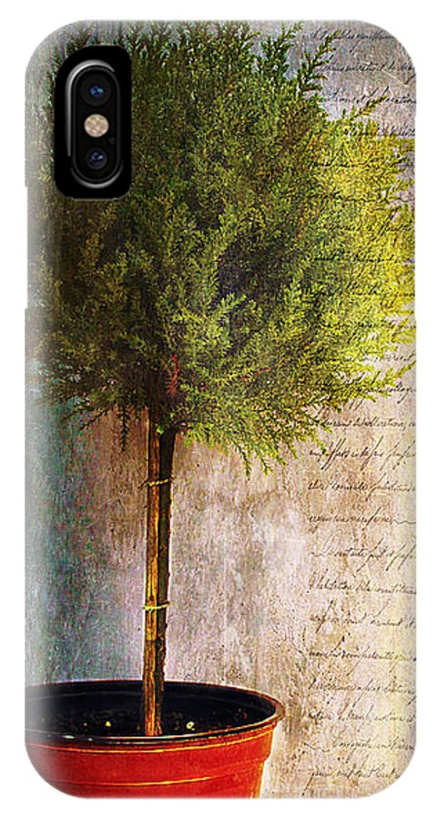 Tree IPhone X Case featuring the photograph Something About Saint Laurent by Nina Silver