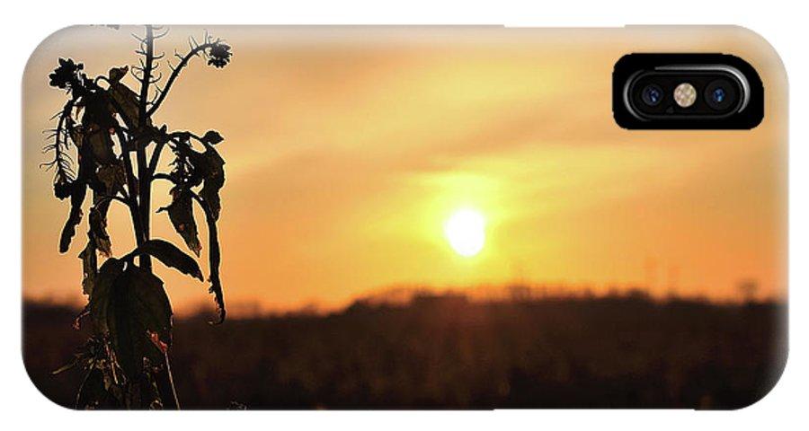 Sonnenuntergang Blume Flowwer Sky Himmel IPhone X Case featuring the photograph Sonnenuntergang by Scimitarable