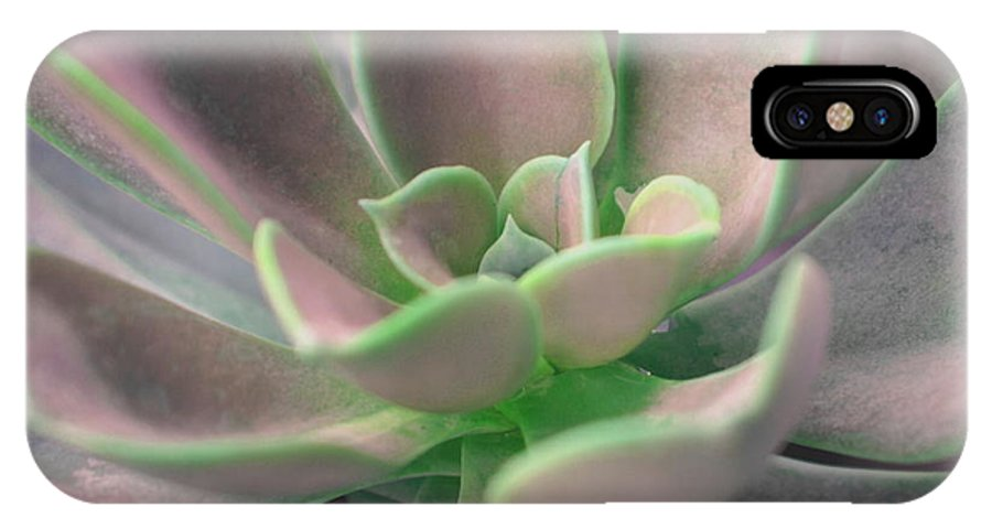 Succulent IPhone X Case featuring the photograph Soooo Succulent by Debbie May