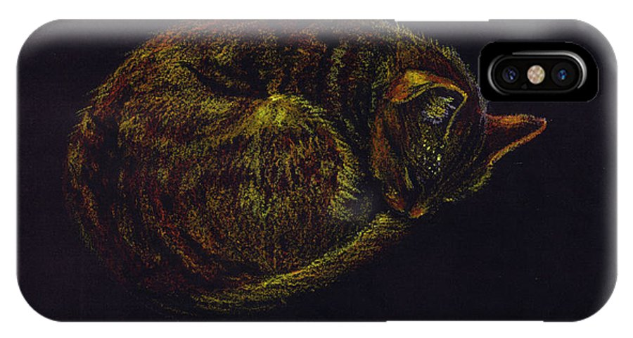 A Cat Soundly Asleep-oil Pastel IPhone X Case featuring the painting Sound Asleep II by Mui-Joo Wee