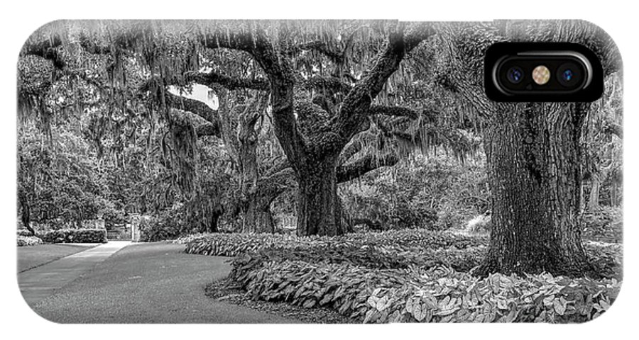 Scenic IPhone X Case featuring the photograph Southern Oaks In Black And White by Kathy Baccari