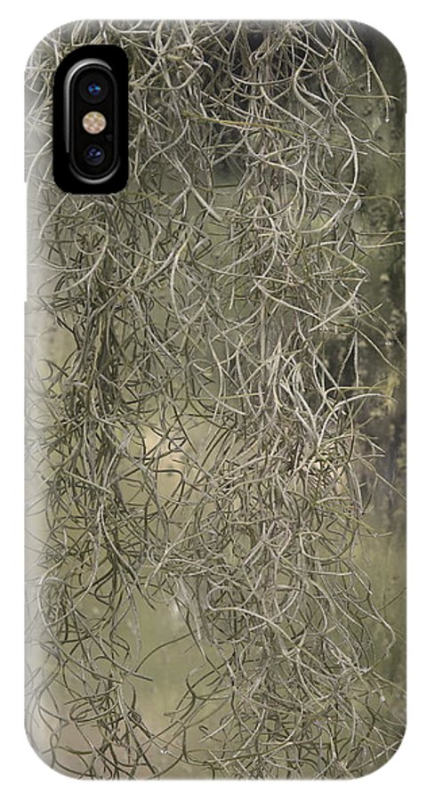 Window IPhone Case featuring the photograph Spainish Moss by Viktor Savchenko
