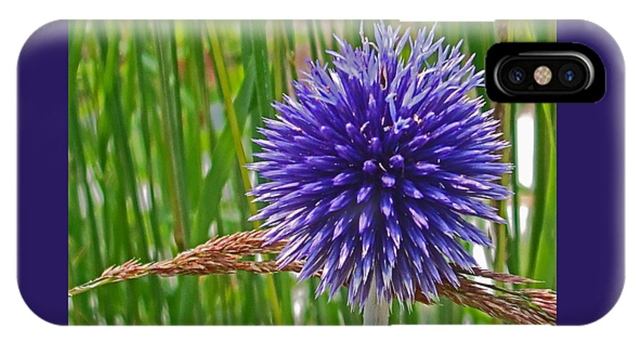Flower IPhone X Case featuring the photograph Spiky Blue by Maria Keady