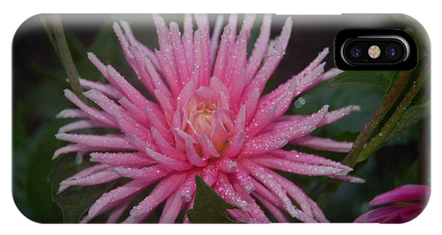 Pink IPhone X Case featuring the photograph Spiky Pink by Sheila McDowell