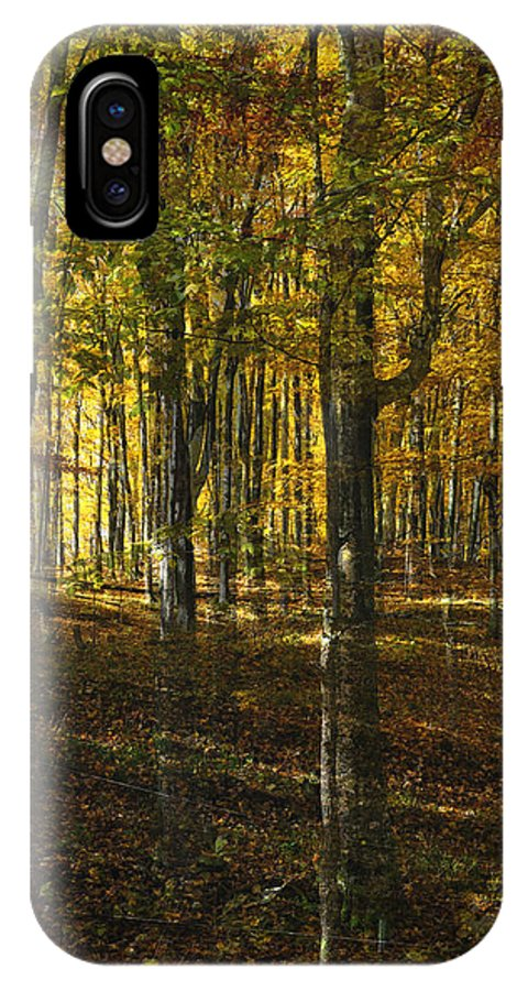 Woods IPhone X Case featuring the photograph Spirits In The Woods by Tim Nyberg