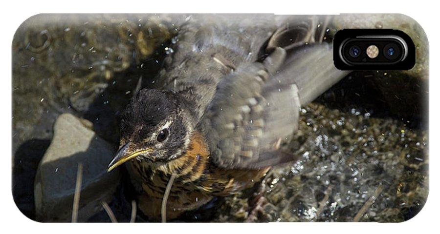Bird IPhone X Case featuring the photograph Splish Splash I Was Taking A Bath - American Robin by Spencer Bush