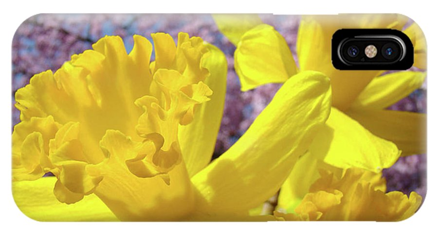 Flowers IPhone X Case featuring the photograph Spring Art Prints Yellow Daffodils Flowers Pink Blossoms Baslee Troutman by Baslee Troutman