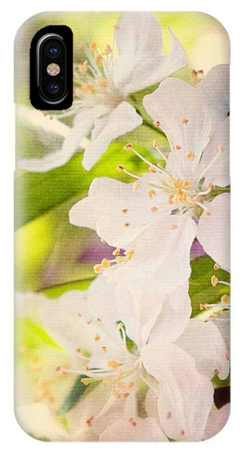 Art IPhone X Case featuring the photograph Spring Blossoms by Al Mueller