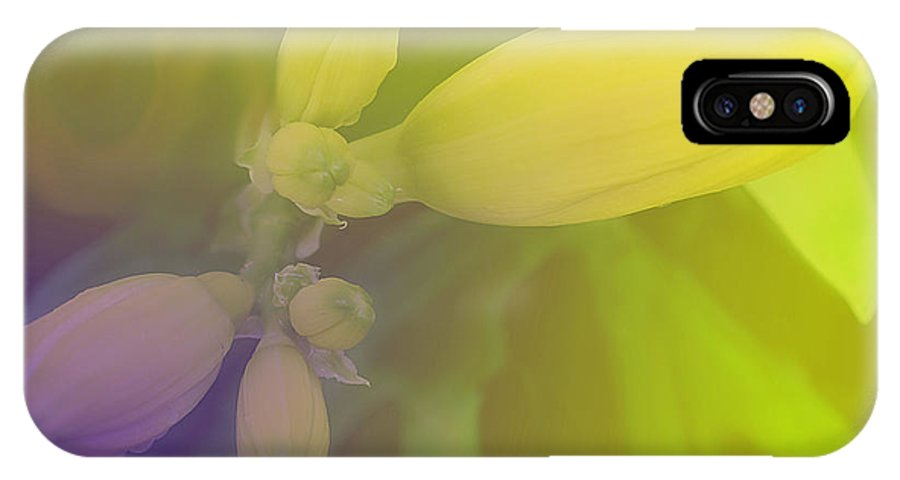 Flower IPhone X Case featuring the photograph Spring Buds by Ian MacDonald