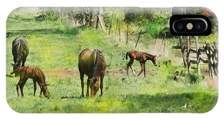 Spring Colts IPhone X Case featuring the digital art Spring Colts by John Beck