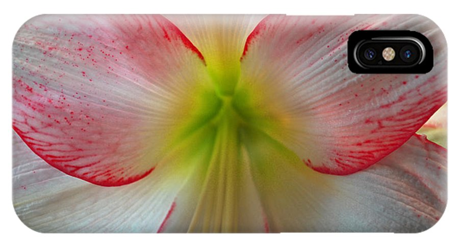 Flowers IPhone X Case featuring the photograph Spring Forth by Donna Shahan