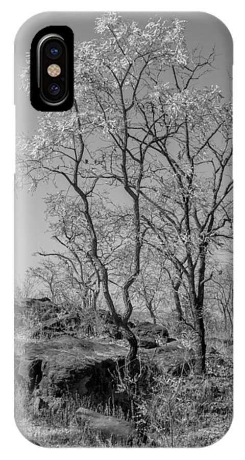 Spring IPhone X Case featuring the photograph Spring by Hitendra SINKAR
