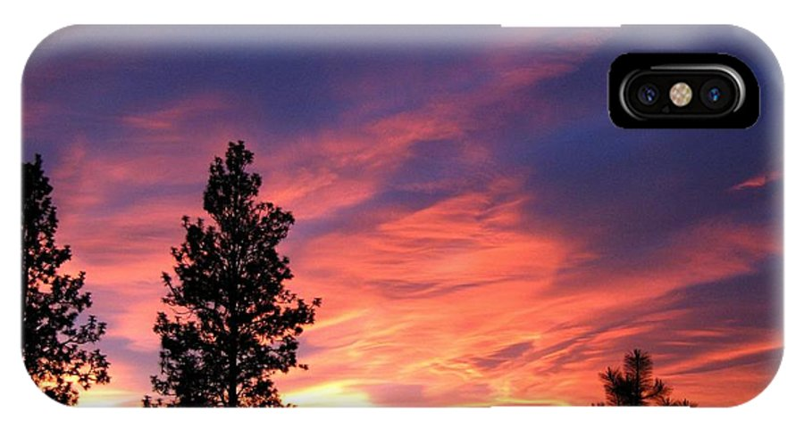 Sunset IPhone X Case featuring the photograph Spring Spectacle by Will Borden