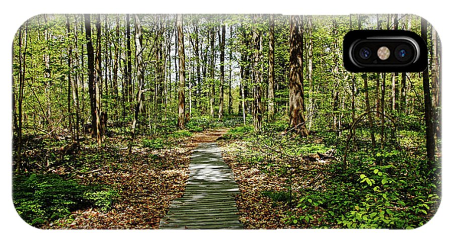 Spring Woodland IPhone X Case featuring the photograph Spring Woods by Debbie Oppermann