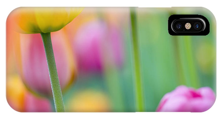 Flowers IPhone X Case featuring the photograph Springtime by Silke Magino