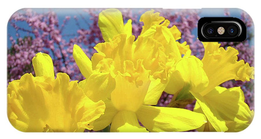 Nature IPhone X Case featuring the photograph Springtime Yellow Daffodils Art Print Pink Blossoms Blue Sky Baslee Troutman by Baslee Troutman