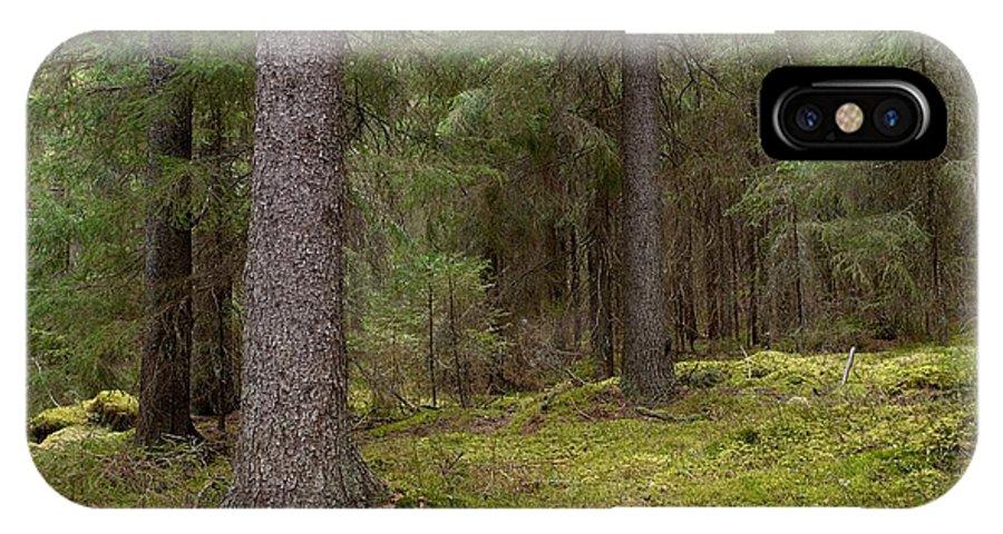 Lehtokukka IPhone X Case featuring the photograph Spruce Forest by Jouko Lehto