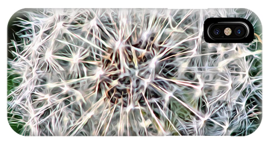 Flower IPhone X / XS Case featuring the photograph Square Dandelion 2 by Modern Art