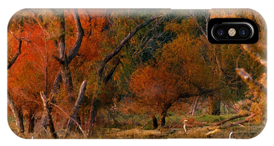 Landscape IPhone X Case featuring the photograph Squaw Creek Egrets by Steve Karol