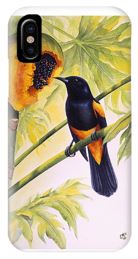 Chris Cox IPhone X Case featuring the painting St. Lucia Oriole And Papaya by Christopher Cox