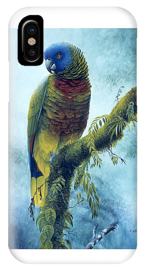 Chris Cox IPhone Case featuring the painting St. Lucia Parrot - Majestic by Christopher Cox