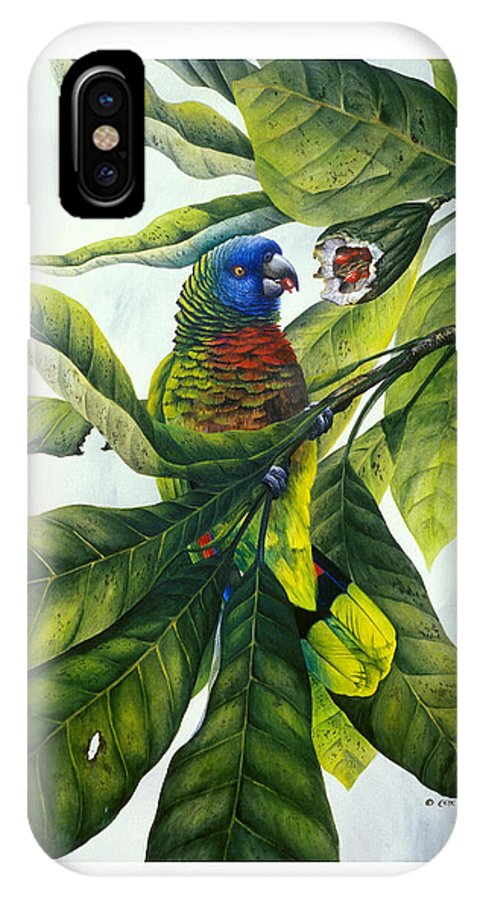 Chris Cox IPhone Case featuring the painting St. Lucia Parrot And Fruit by Christopher Cox