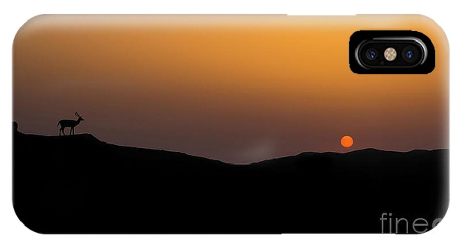 Sunset IPhone X Case featuring the photograph Stag Silhouette by Shaun Wilkinson