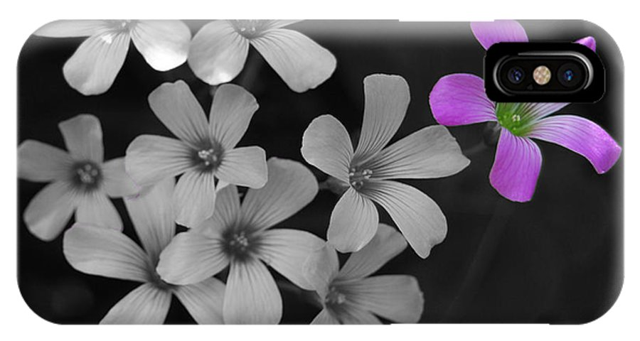Flower IPhone X Case featuring the photograph Stand Up Stand Out by Maggy Marsh