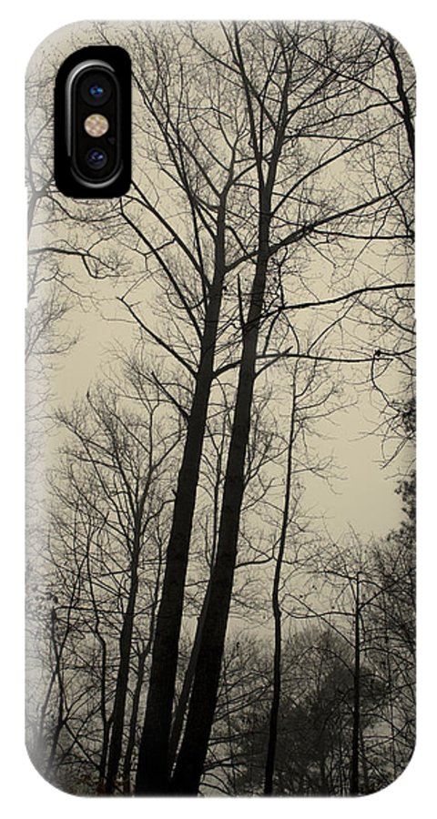 Trees IPhone X / XS Case featuring the photograph Standing Tall by Ayesha Lakes
