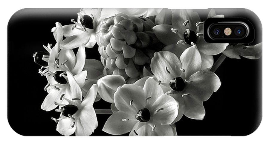 Flower IPhone X Case featuring the photograph Star Of Bethlehem In Black And White by Endre Balogh