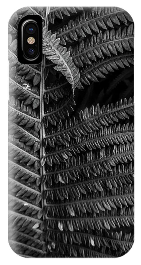 Fern IPhone X Case featuring the photograph Stepping Out Of Line by James Aiken