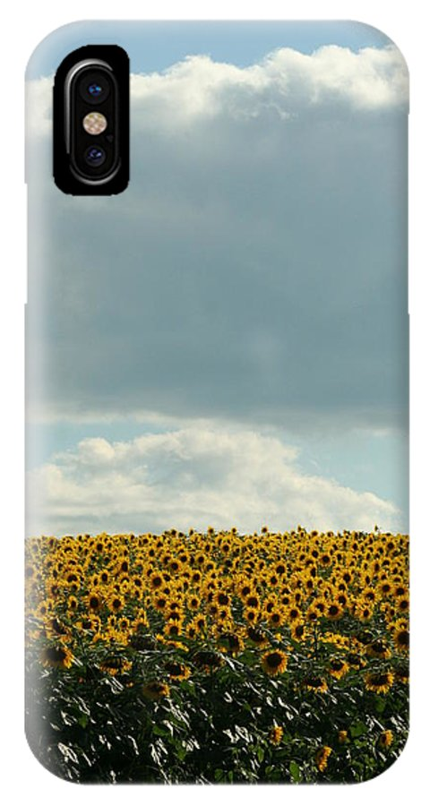 Sunflower IPhone X / XS Case featuring the photograph Storm Cloud Above Our Heads by Tammy Finnegan